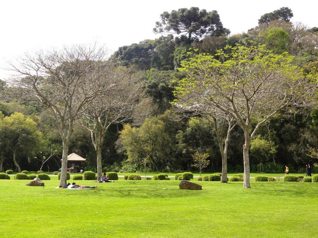 Parque Bacacheri, um dos mais antigos e aconchegantes parques de Curitiba!